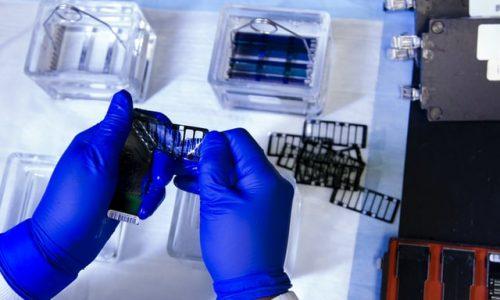 national-cancer-institute-ysv6k_gPOZM-unsplash